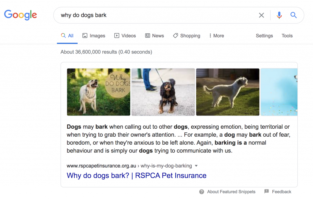 Google snippet example